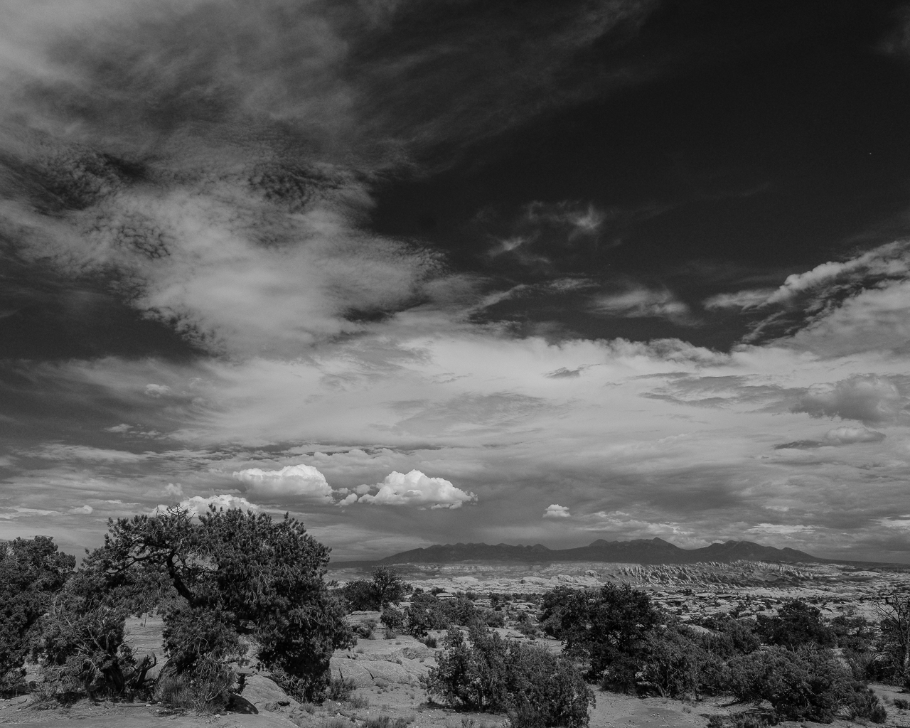 Day 214 - 365 Day B&W Photo Challenge - The late afternoon storm clouds beging to form over the desert. - Fuji X-T3, XF 14mm f/2.8, Acros  R Film Simulation