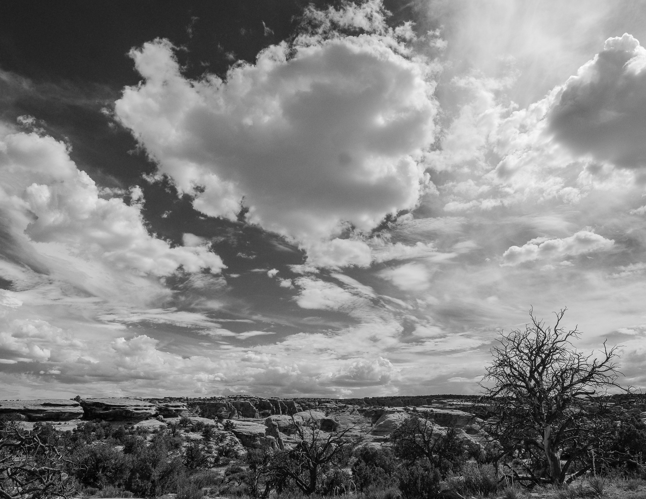 Day 211 - 365 Day B&W Photo Challenge - The midday skies cover the desert landscapes. - Fuji X-T3, XF 14mm f/2.8, Acros  R Film Simulation