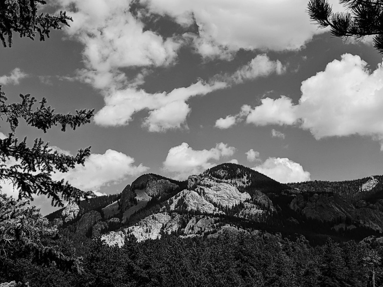 Day 238 - 365 Day B&W Photo Challenge - Wonderful views of Black Mountain outside of Pike National Forest - Google Pixel 3 , Prbocessed with VSCO with b3 preset