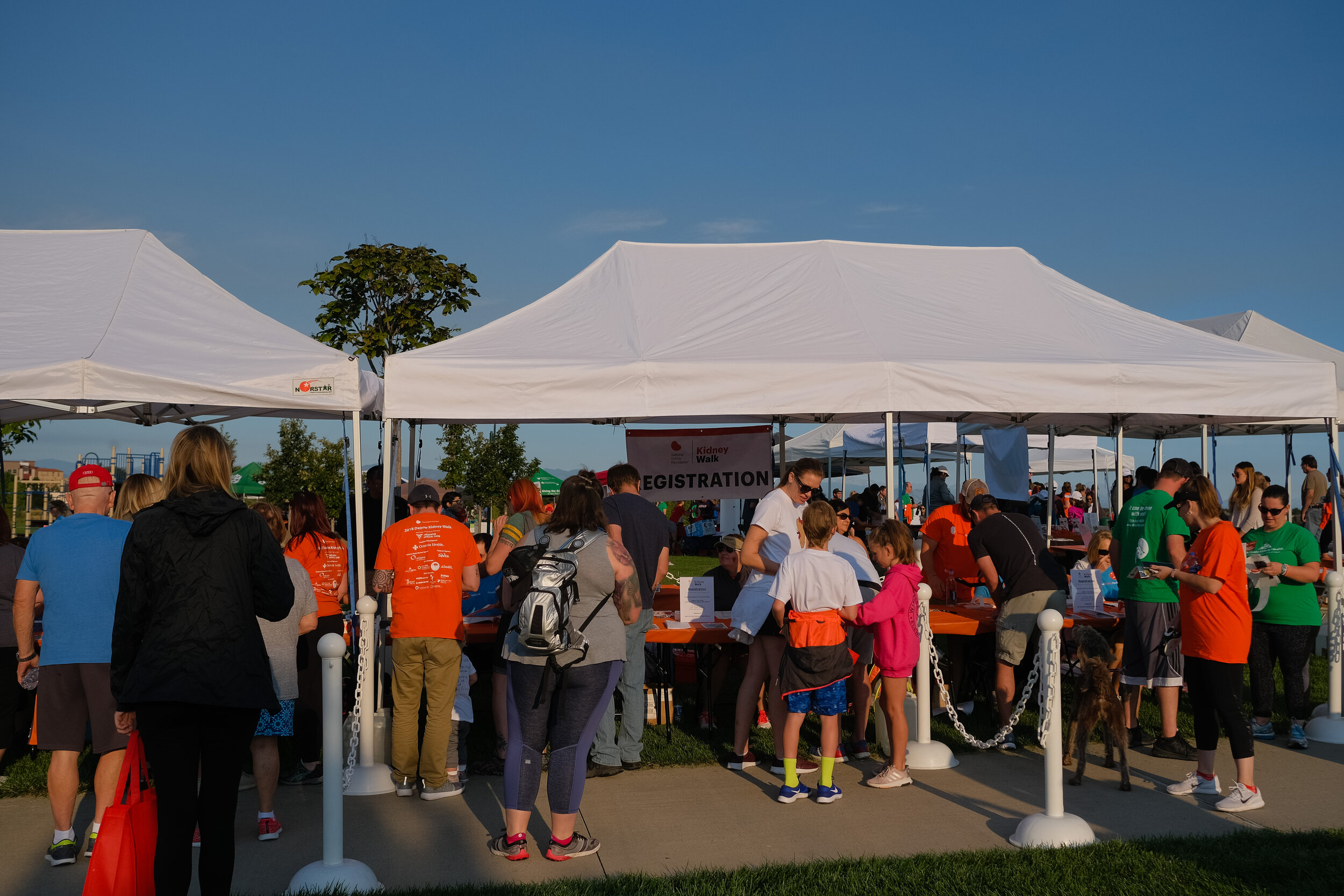 Denver Kidney Walk-10.jpg