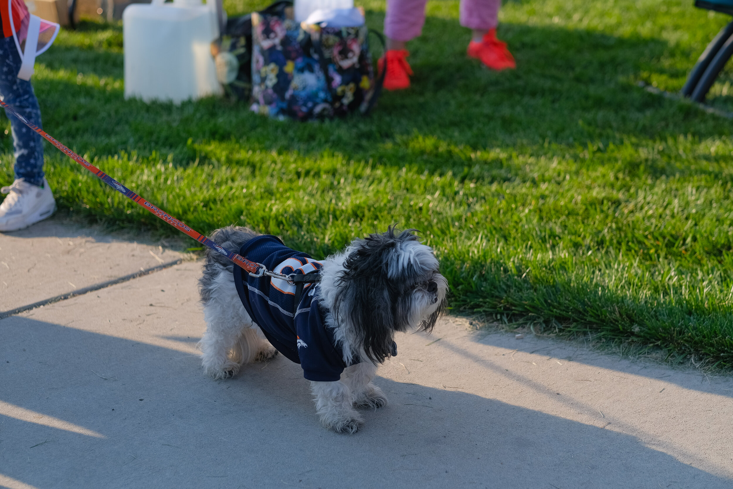 Denver Kidney Walk-17.jpg