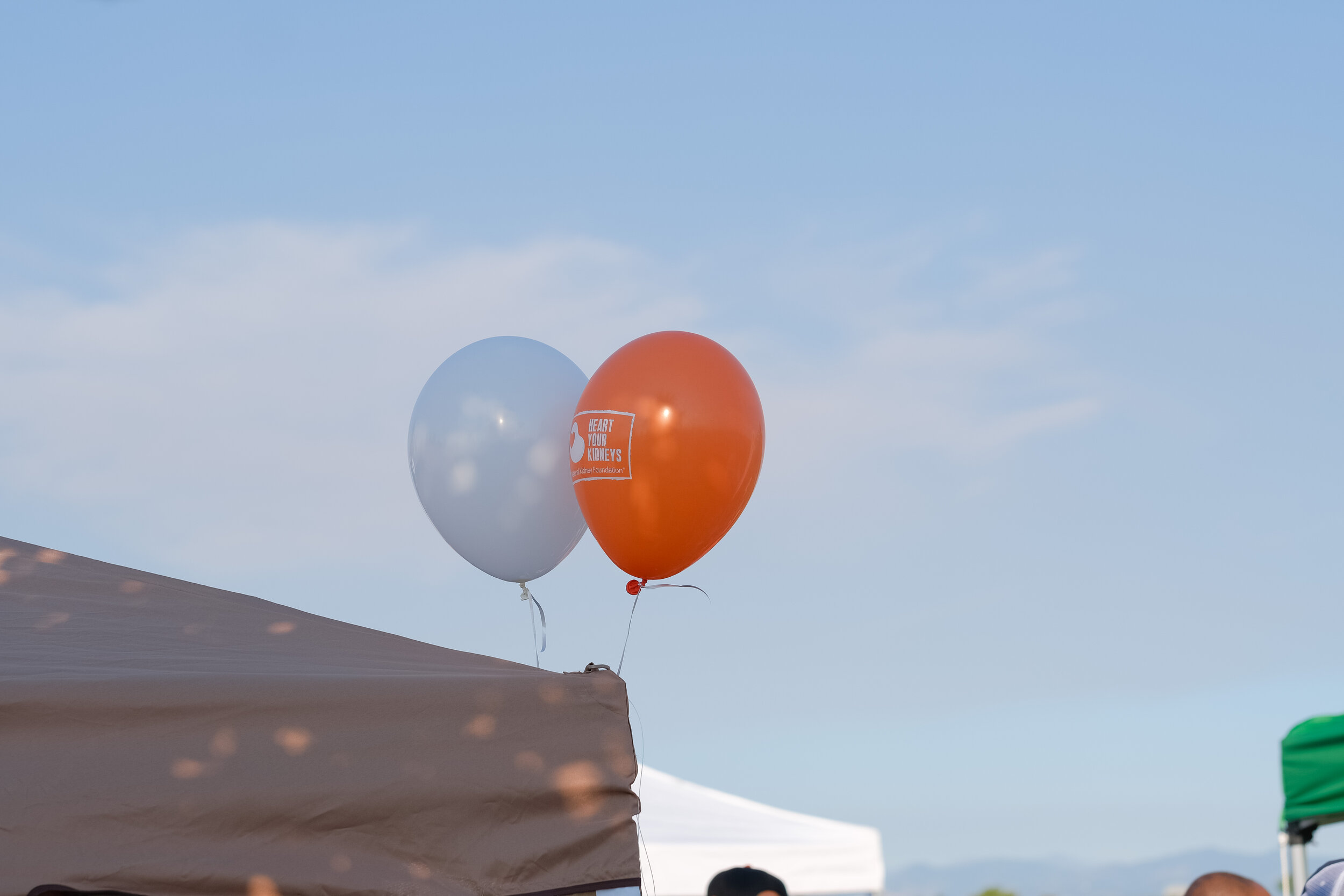 Denver Kidney Walk-24.jpg