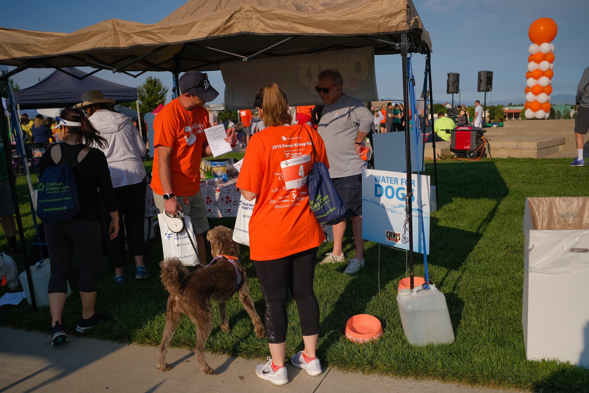 Denver Kidney Walk-44.jpg