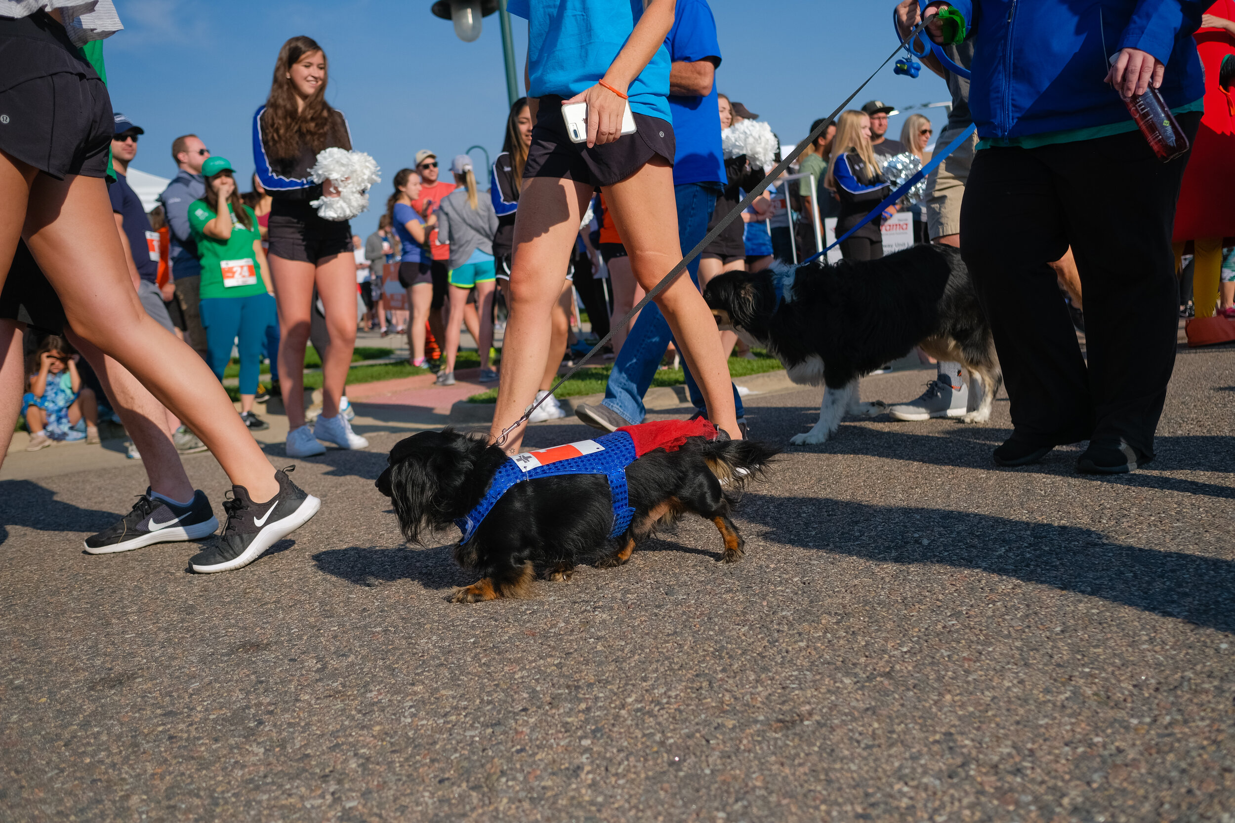 Denver Kidney Walk-75.jpg