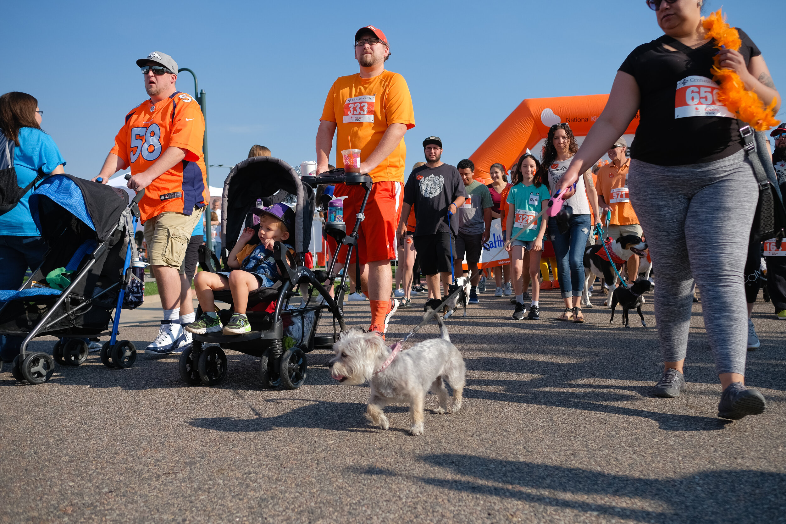 Denver Kidney Walk-92.jpg