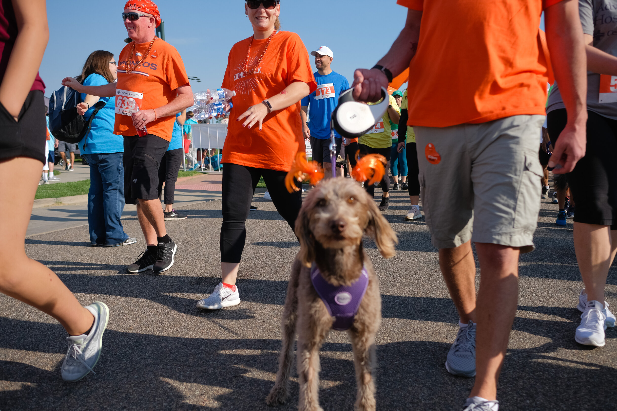 Denver Kidney Walk-94.jpg