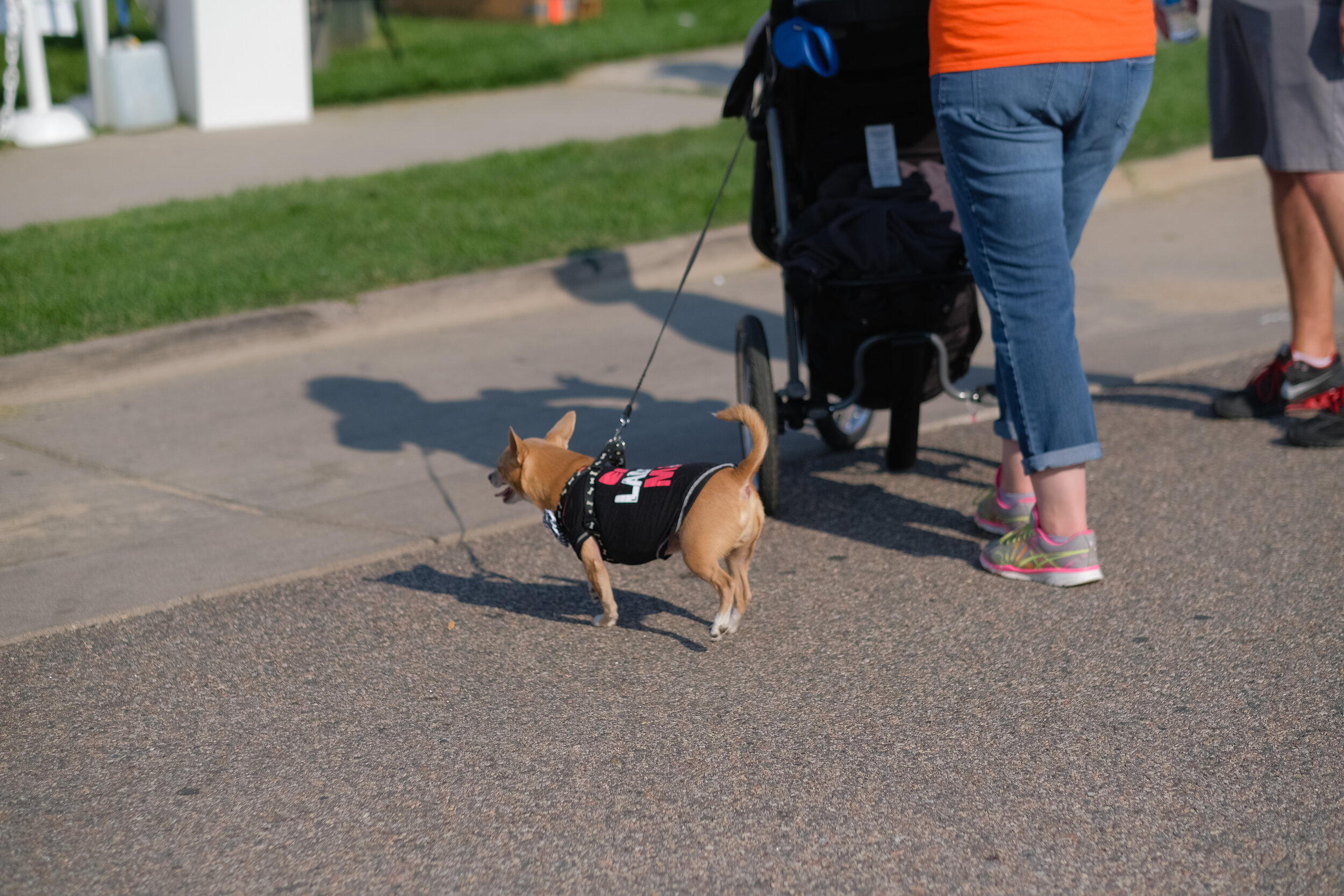 Denver Kidney Walk-148.jpg