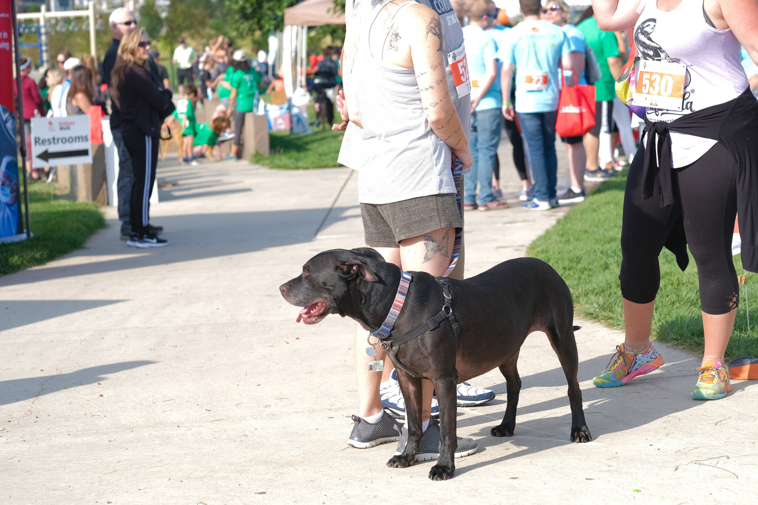 Denver Kidney Walk-163.jpg