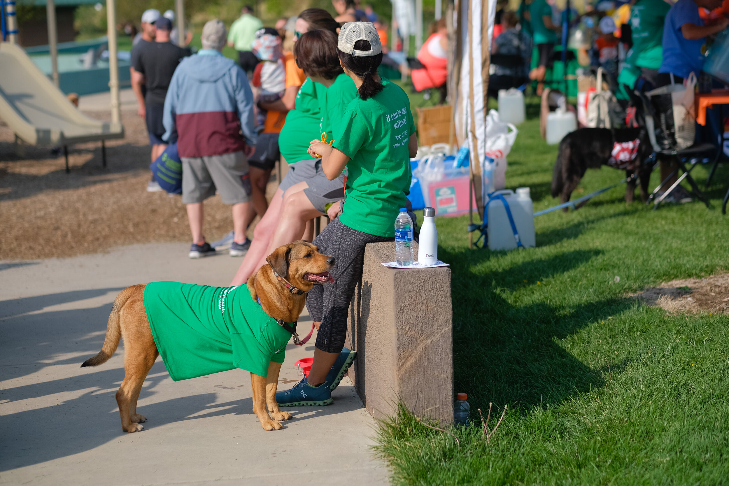Denver Kidney Walk-165.jpg