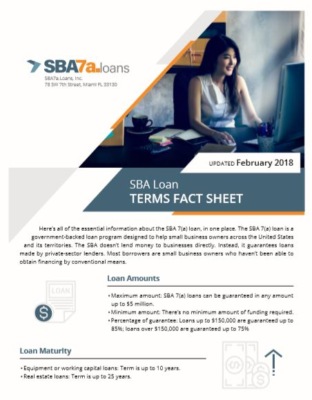 Fact Sheet Lead Magnet - This custom-designed fact sheet was used as a lead magnet for an informational website, SBA7a.loans.
