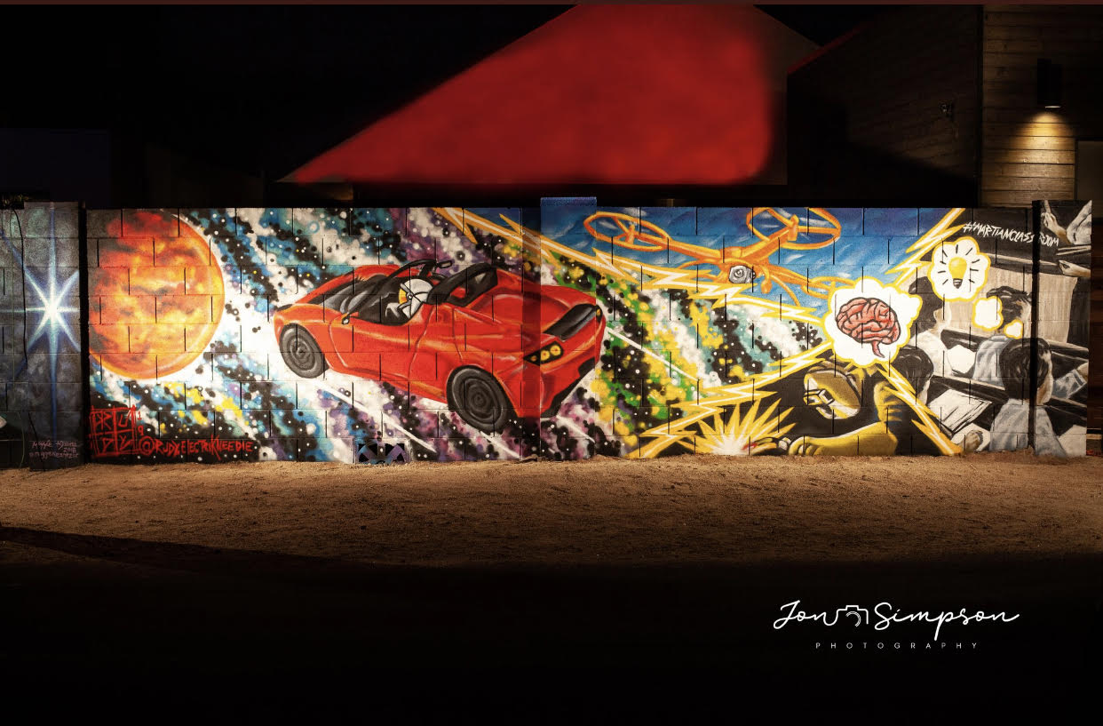 Mural Created for the Oak Street Mural Festival.  This mural is based on the book The Martians in Your Classroom Co-Authored by Rachael Mann, and Photography by Jon Simpson.