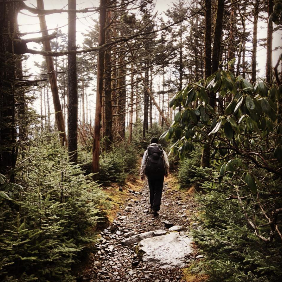 backpacking trips in the Great Smoky Mountains