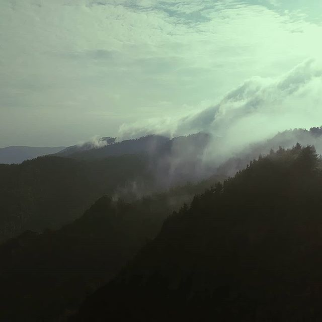 5 days in Smoky Mountain National Park. Woke up early and got to the Bunion just in time to watch a wall of clouds crest the ridgeline. One of the most beautiful things I have ever seen. #americanwildtrekking #americanwilderness #hiking #picoftheday #wilderness #mountains #morningsun #getoutside #smokymountains #smnp #gatlinburg #livelifeofadventure #photooftheday #clouds #backpacking #backcountry #backpackingadventures #lonelyplaces #lostinthewild #appalachiantrail #appalachians #camping #thesebootsaremadeforwalkin #tennessee #knoxville #nationalparks #trees #tent #onlyinamerica