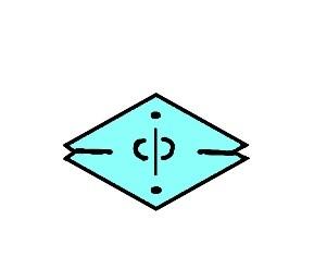 mmiiccd logo 2.jpg