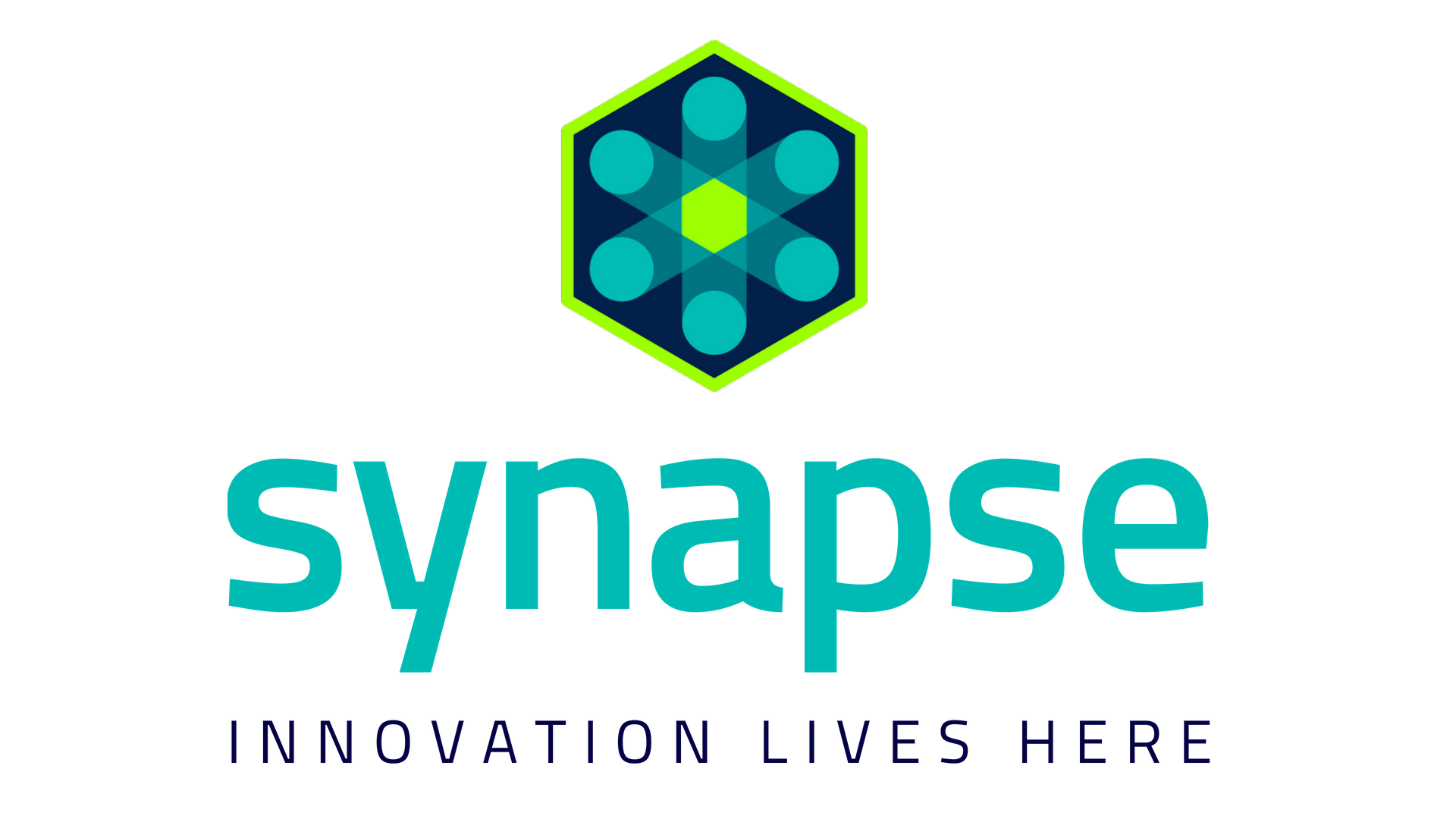 synapse primary logo_december_2018.png