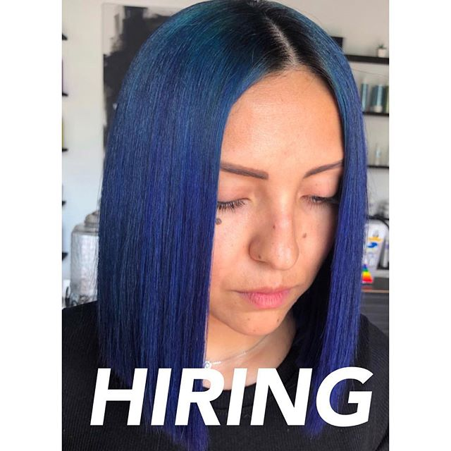 We are looking to expand our team. Must be a licensed cosmetologist. Salon Assistant position and Hairstylist position available. Give is a call 📲  ______________________ Stylist @colorbylilly  #bluehair #colorlove