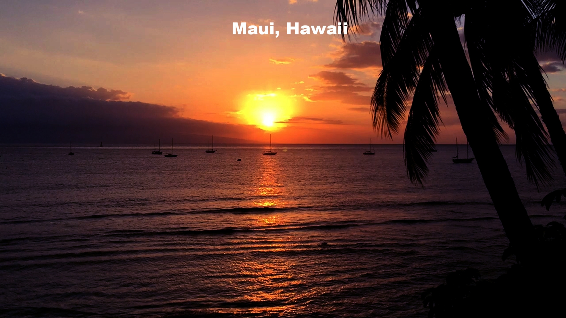 Maui_Hawaii.jpg