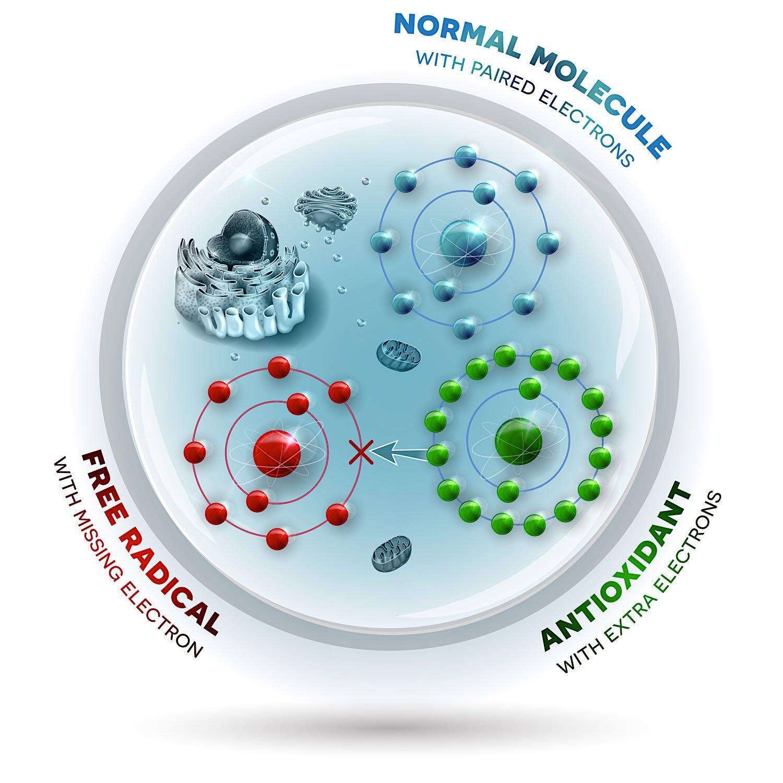 Moleküle .jpg
