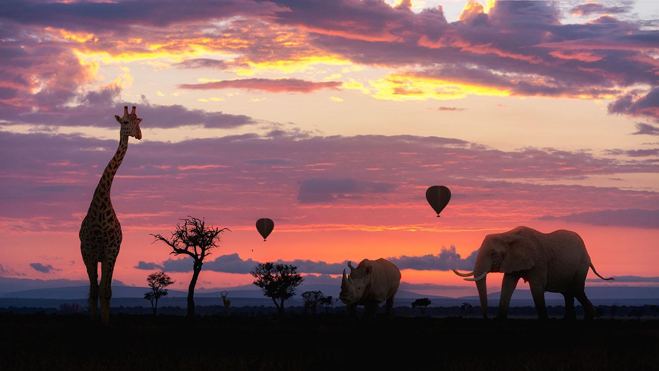 Elephants_Giraffes_On_Safari_5.jpg