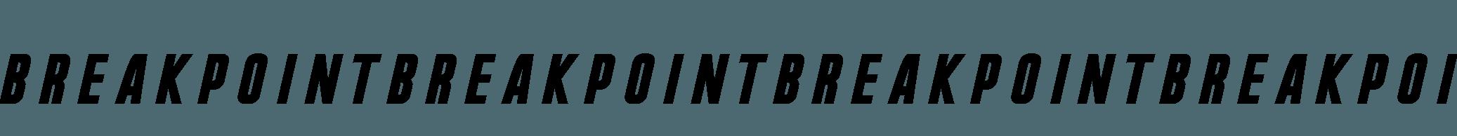 Break Point BannerArtboard 20@72x-8.png