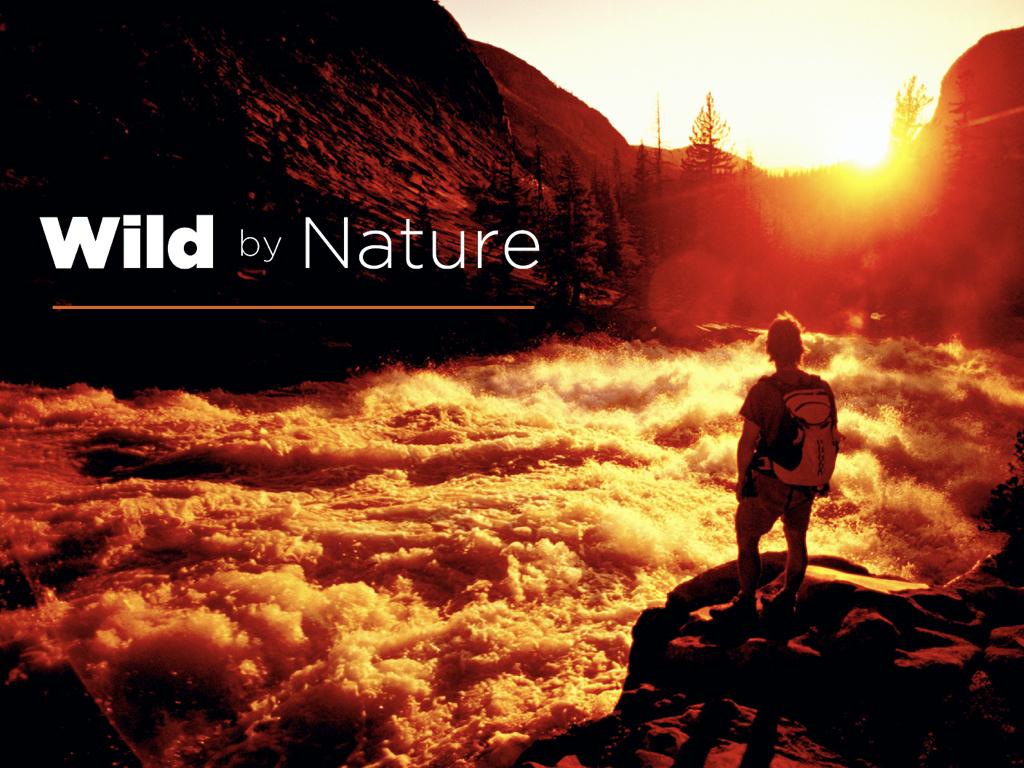 Wild by Nature Keynote Slide.001.jpeg