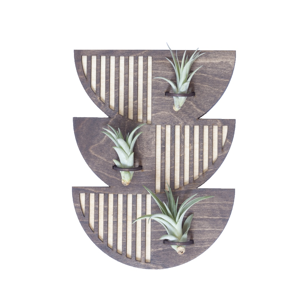 air-plant-holder-wall-hanger-lasercut-handmade-savvie-studio-lakewood-ohio-cleveland-threefold-gifts.png