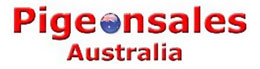 sponsor_pigeonsales.jpg