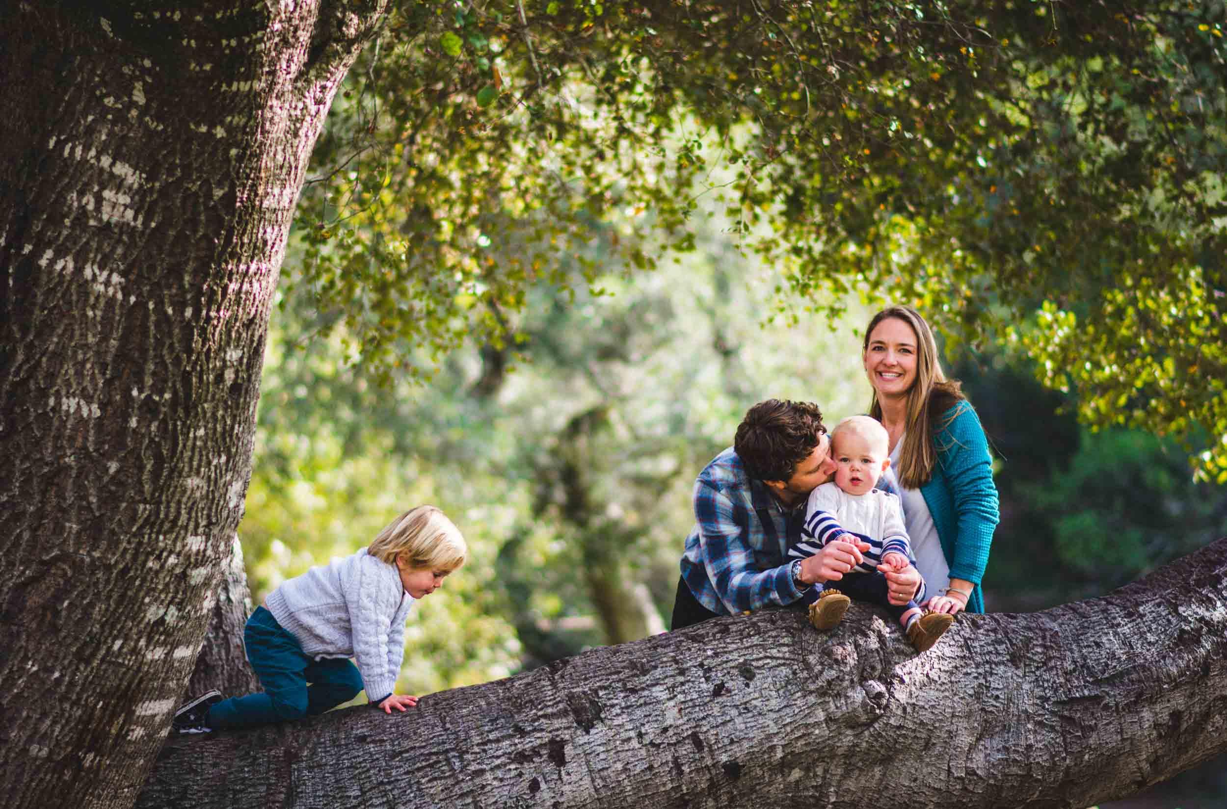 treelove (1 of 1).jpg