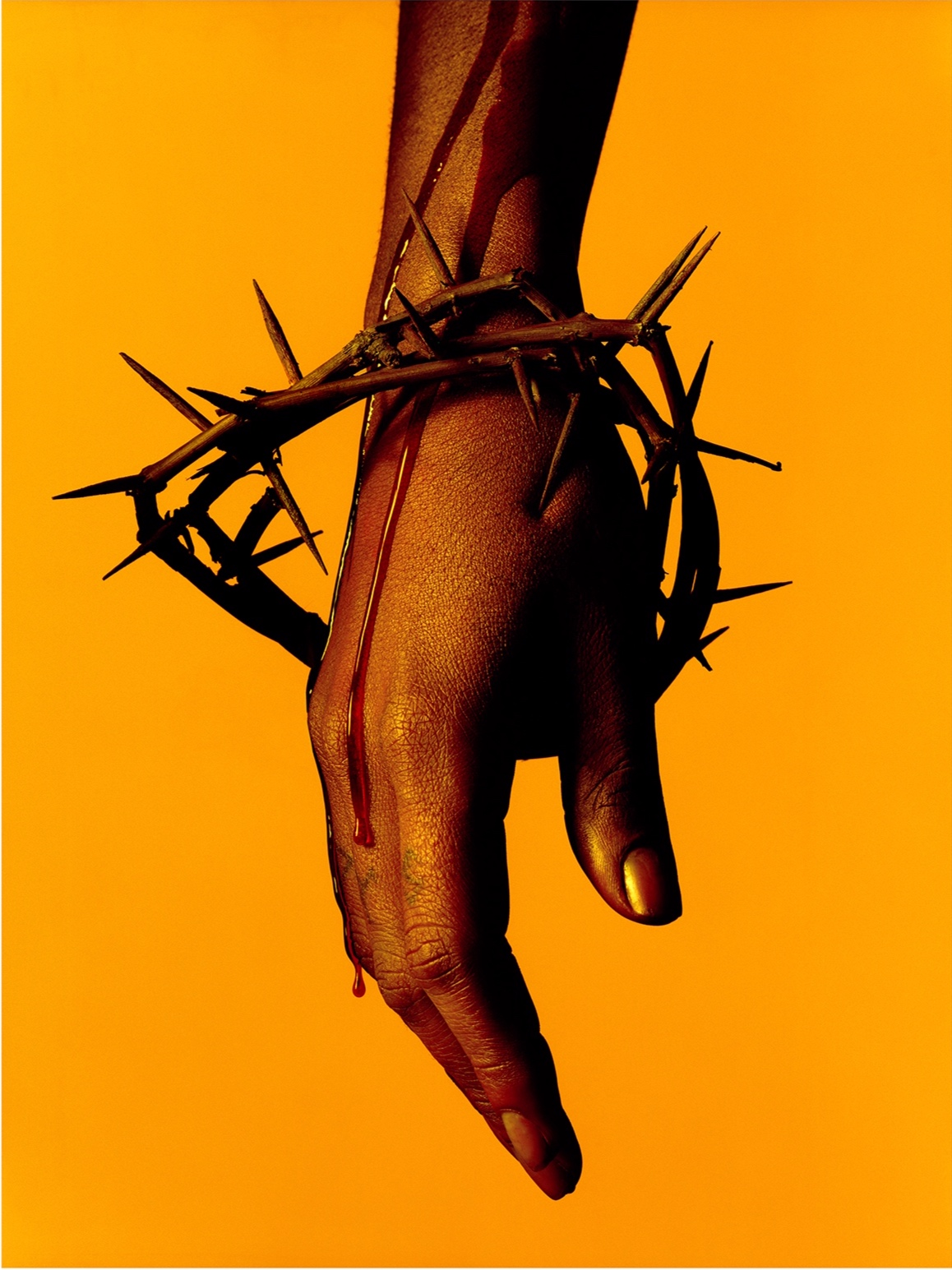 Omahyra by Albert Watson  Available in 3 sizes, Archival pigment print.  Price on request