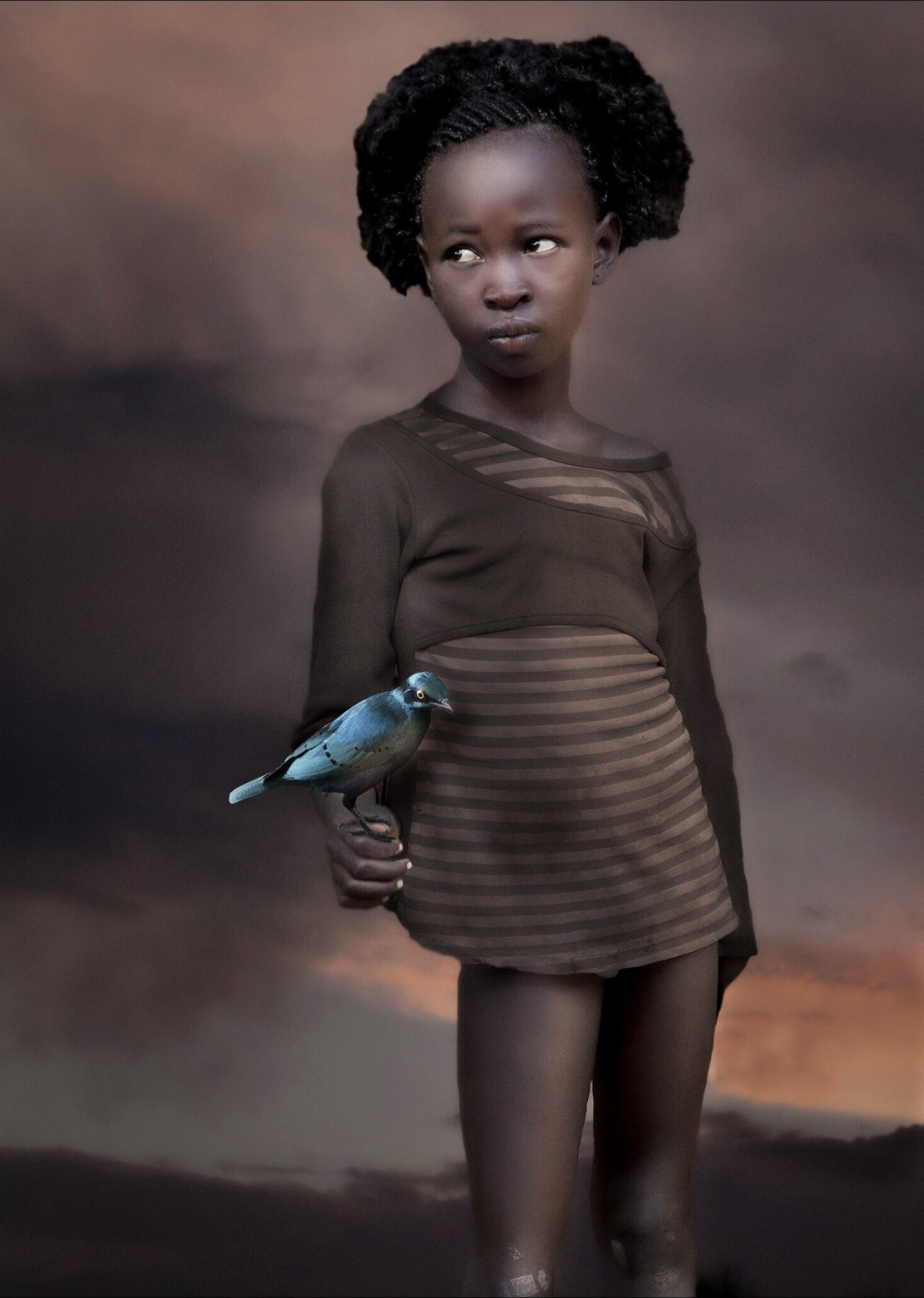 william ropp blue birds dream.jpg