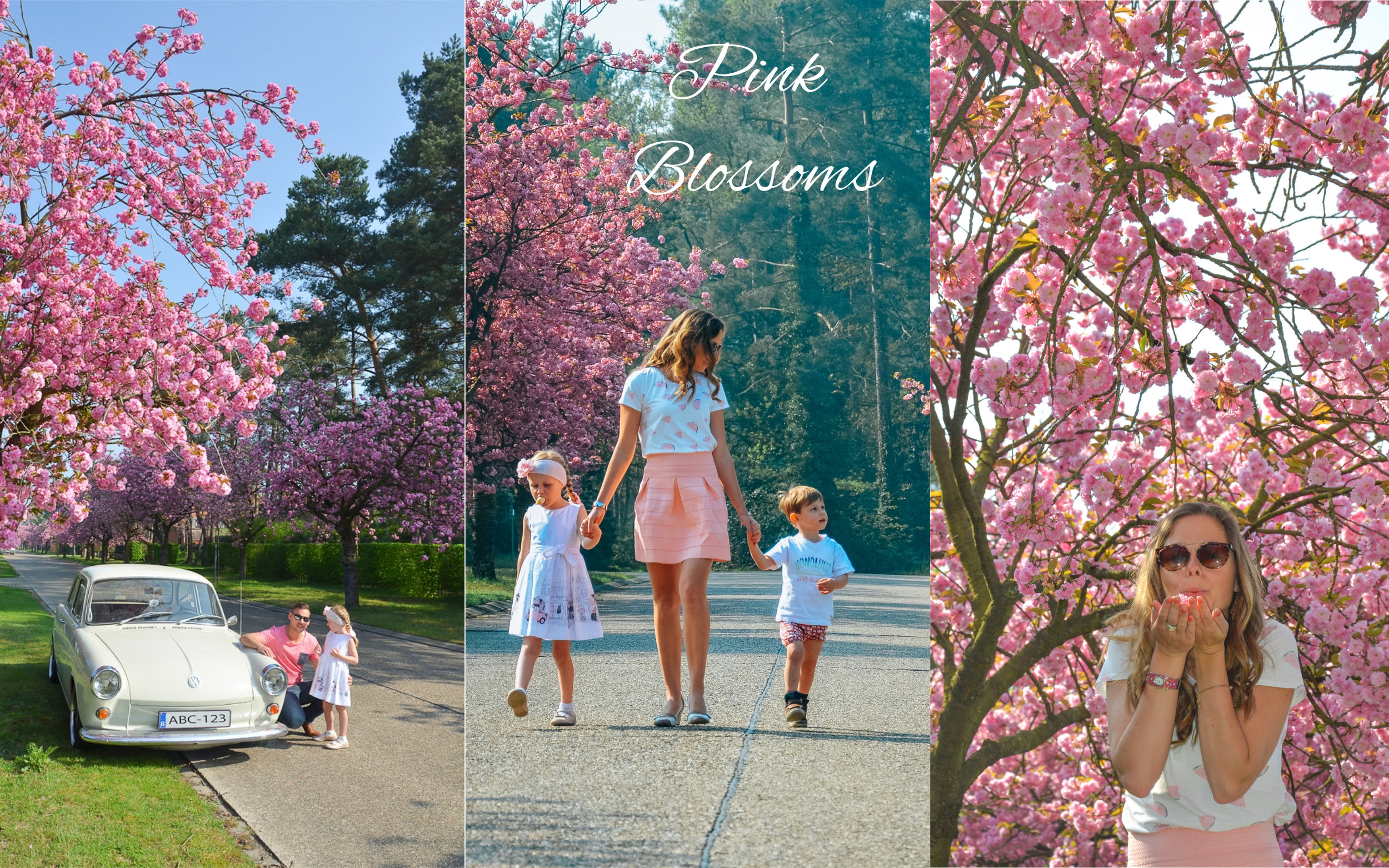 PinkBlossomscollage.jpg