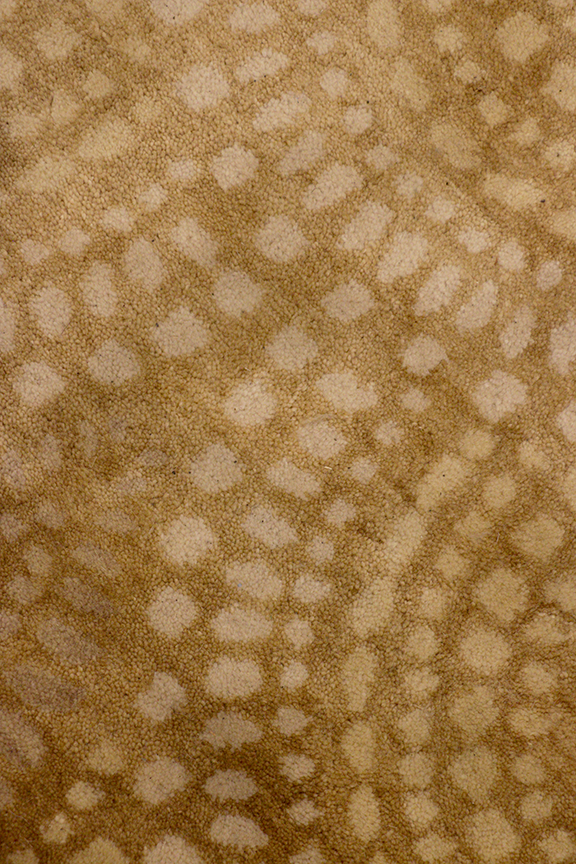 SM_Rug_Gold_Dots_0078.png