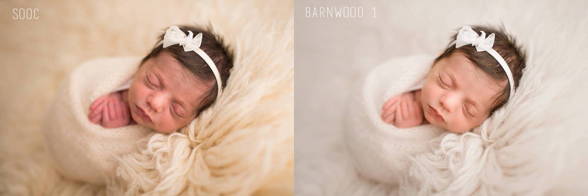 Rachel Farganis Photography