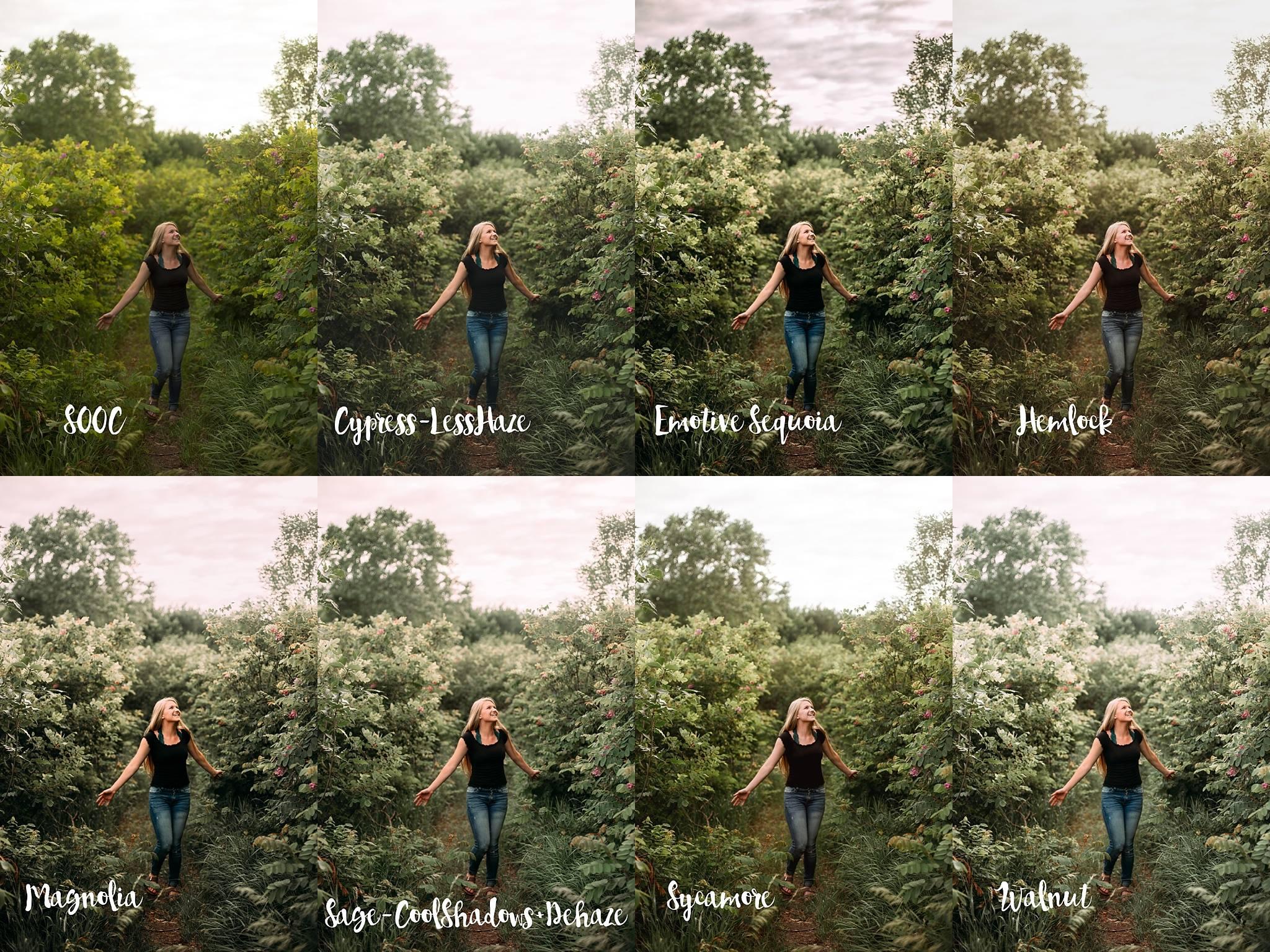 Ivybella Photography