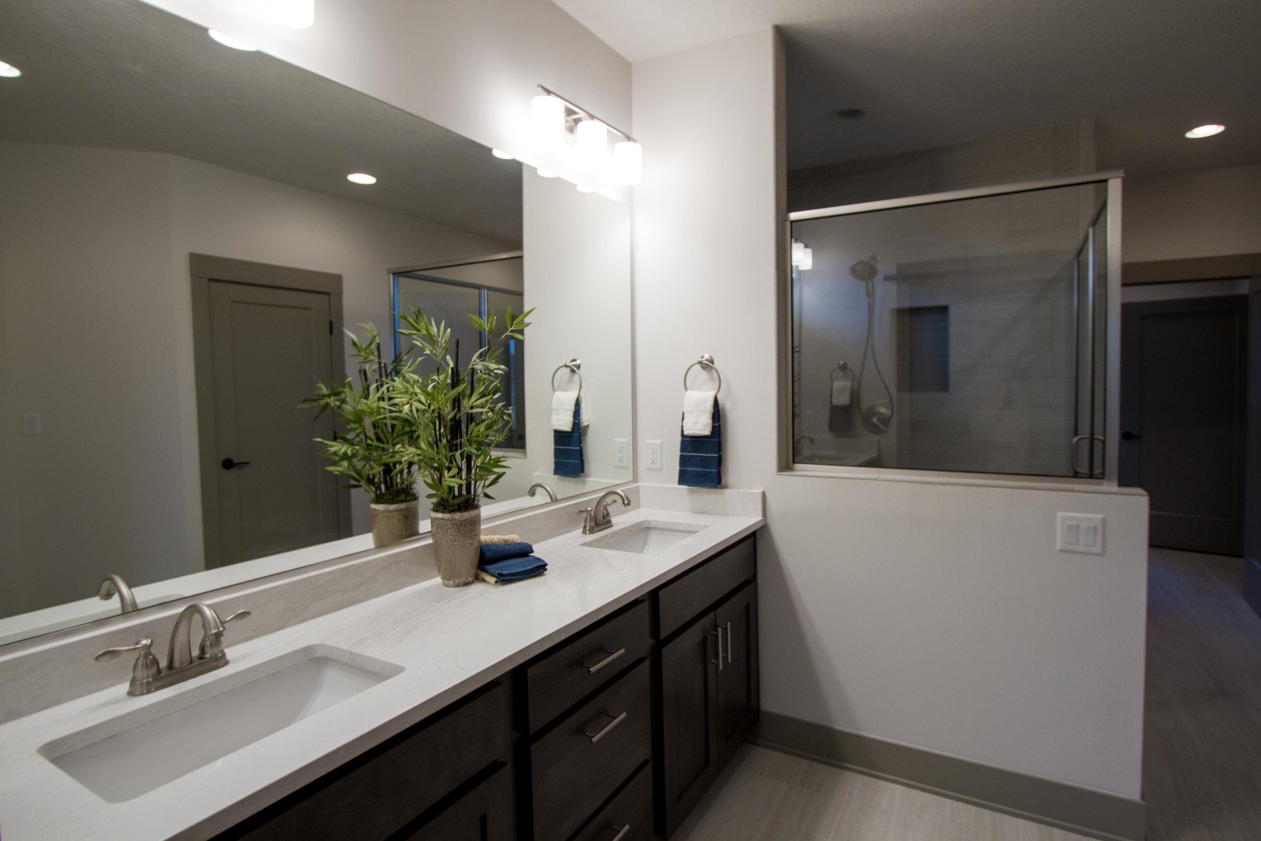Next-Step-Homes_16885-Madison-Circle-Clive_Master-Bathroom.jpg