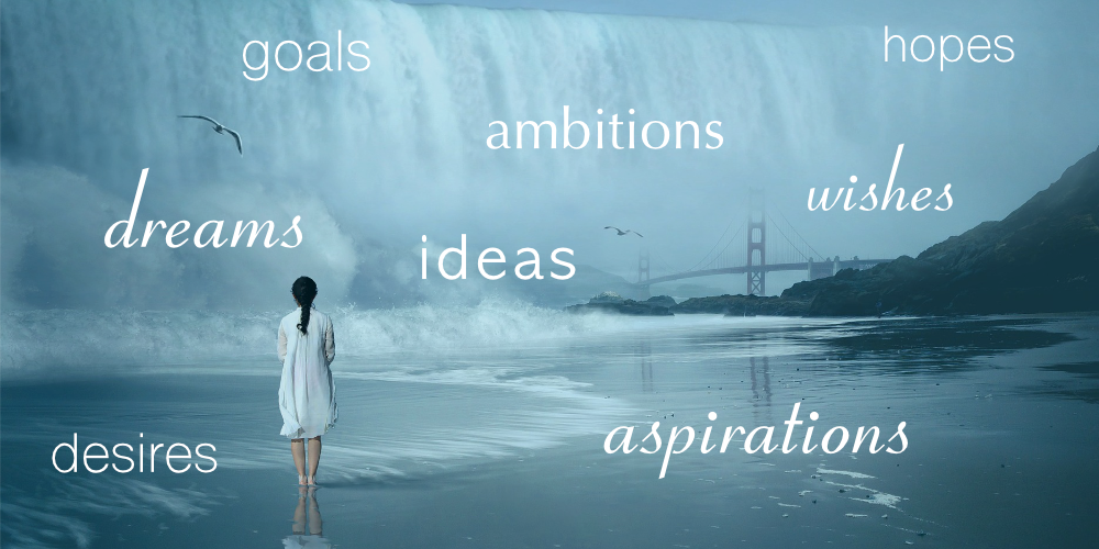 ambitions  aspirations  ideas  goals  hopes  wishes  wants  desires