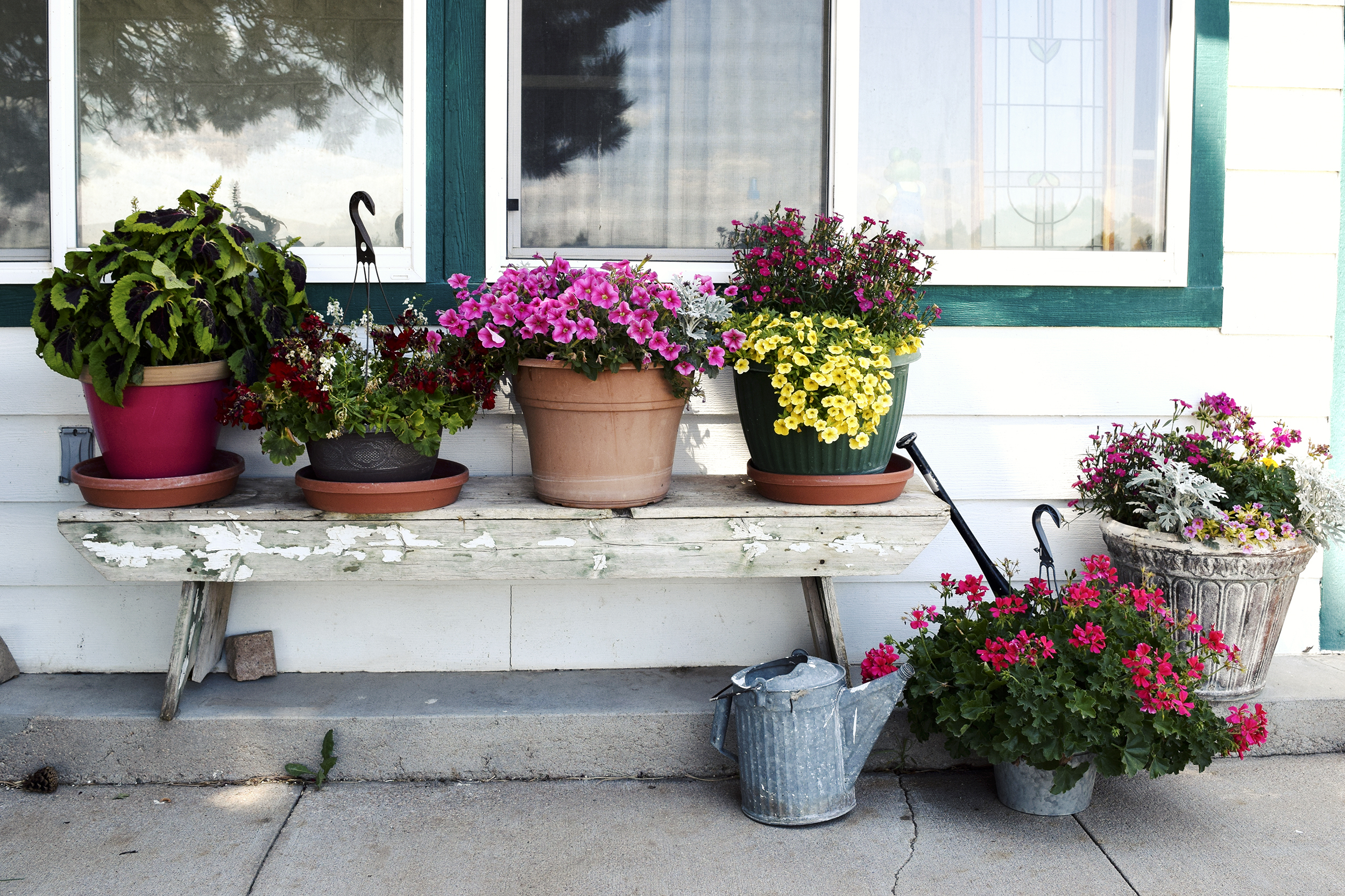 flowers_front_porch.jpg