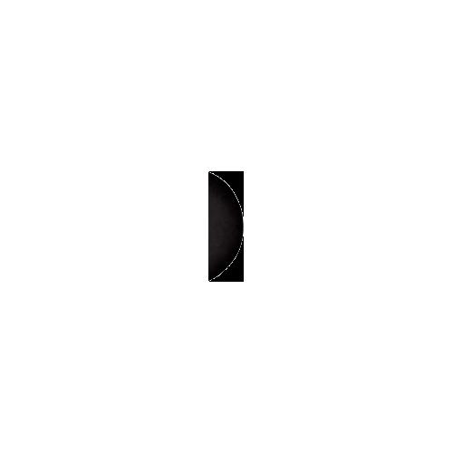 moon_1.png