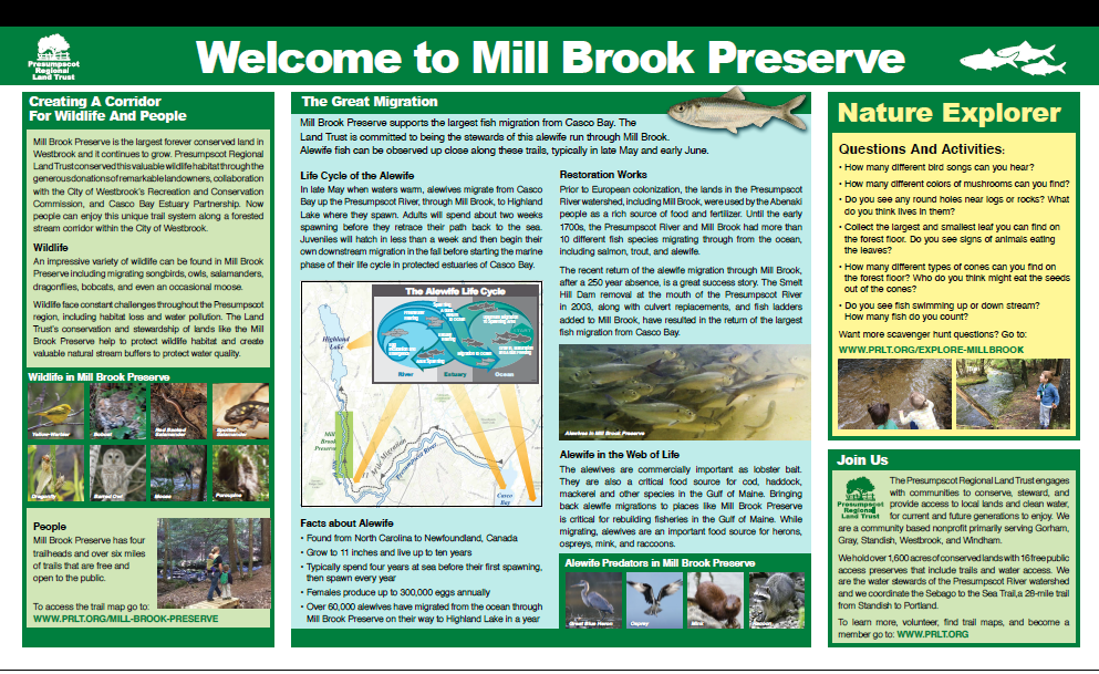 Click above to expand the panel and learn about history, ecology, and conservation at Mill Brook.
