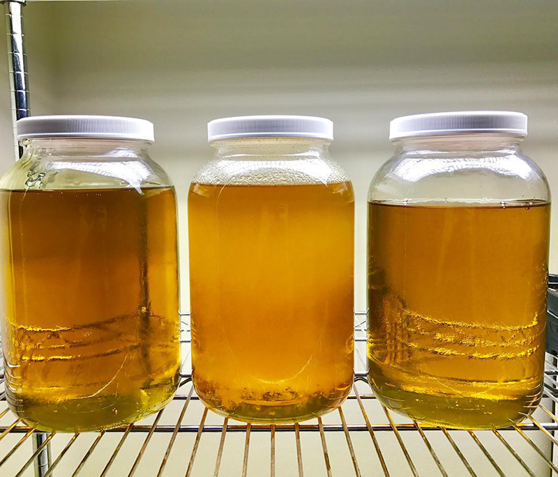 Large jars of extracted CBD oil pictured.