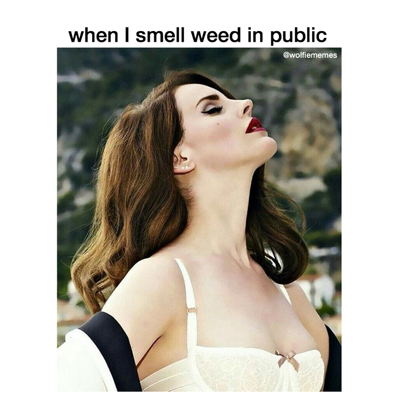 "Reads: ""When I smell weed in public."", Image: Lana Del Rey with head angled up as if to sniff the sky."""