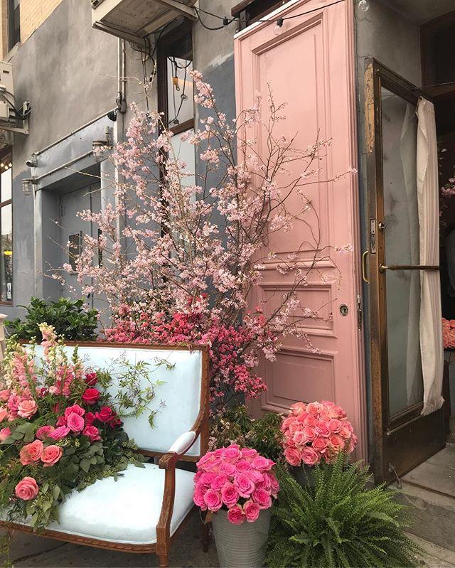 A @freshbeauty garden grows on Delancey Street 🌸 🌹 🌸 #freshrose