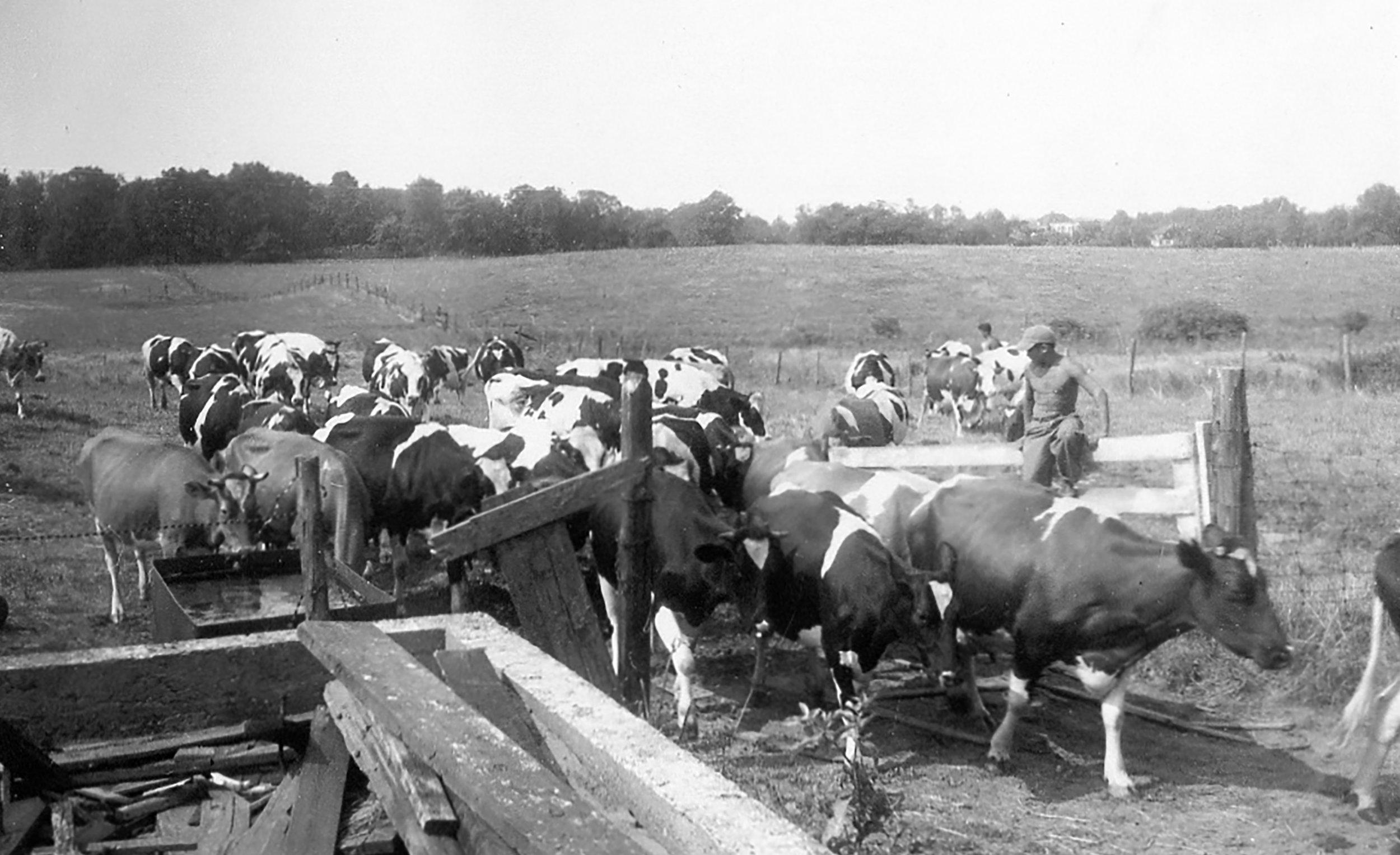 122_Mt. Loretto_July 1939 (2).jpg