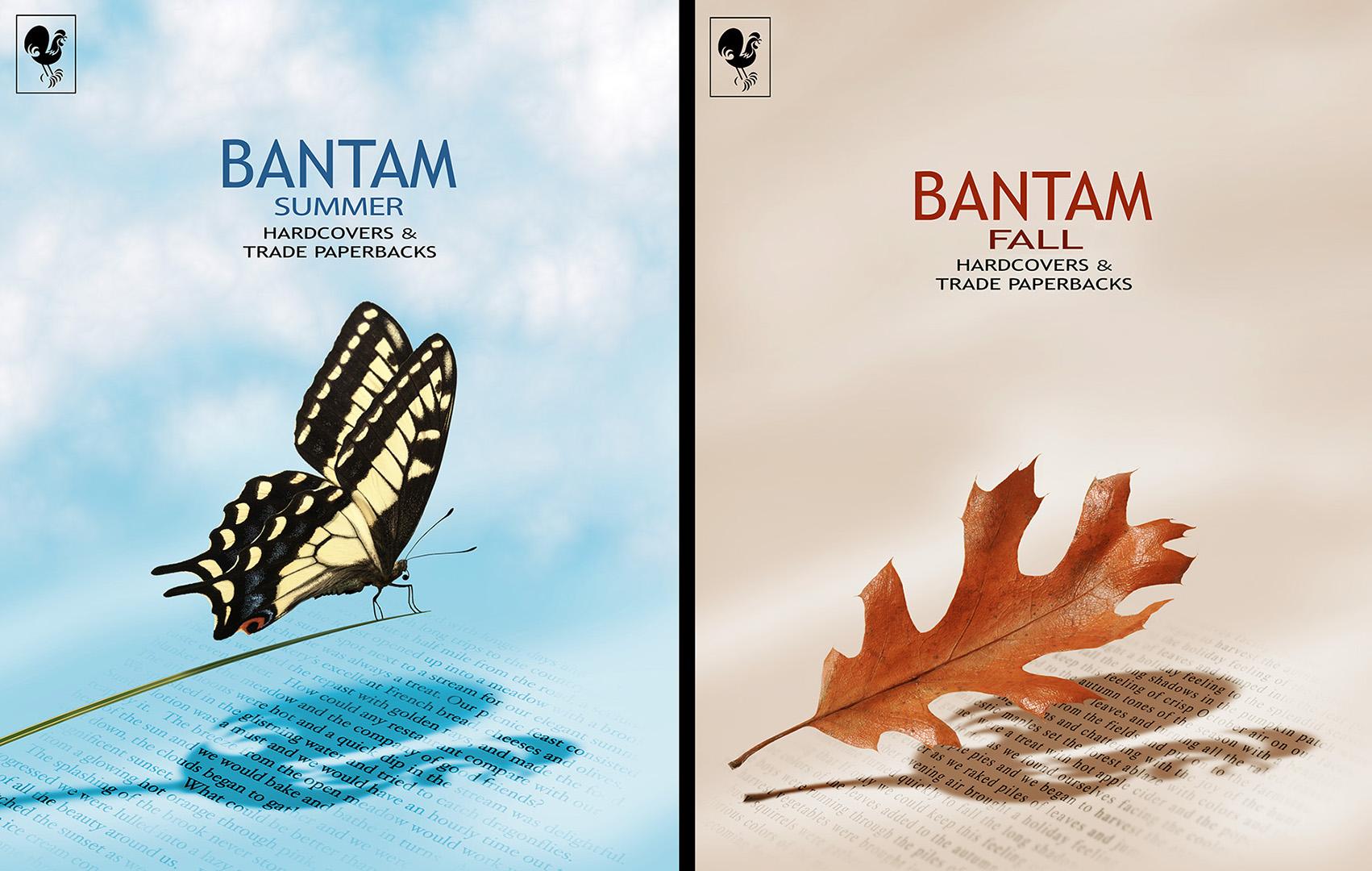 Bantam-Leaf_Butterfly.jpg