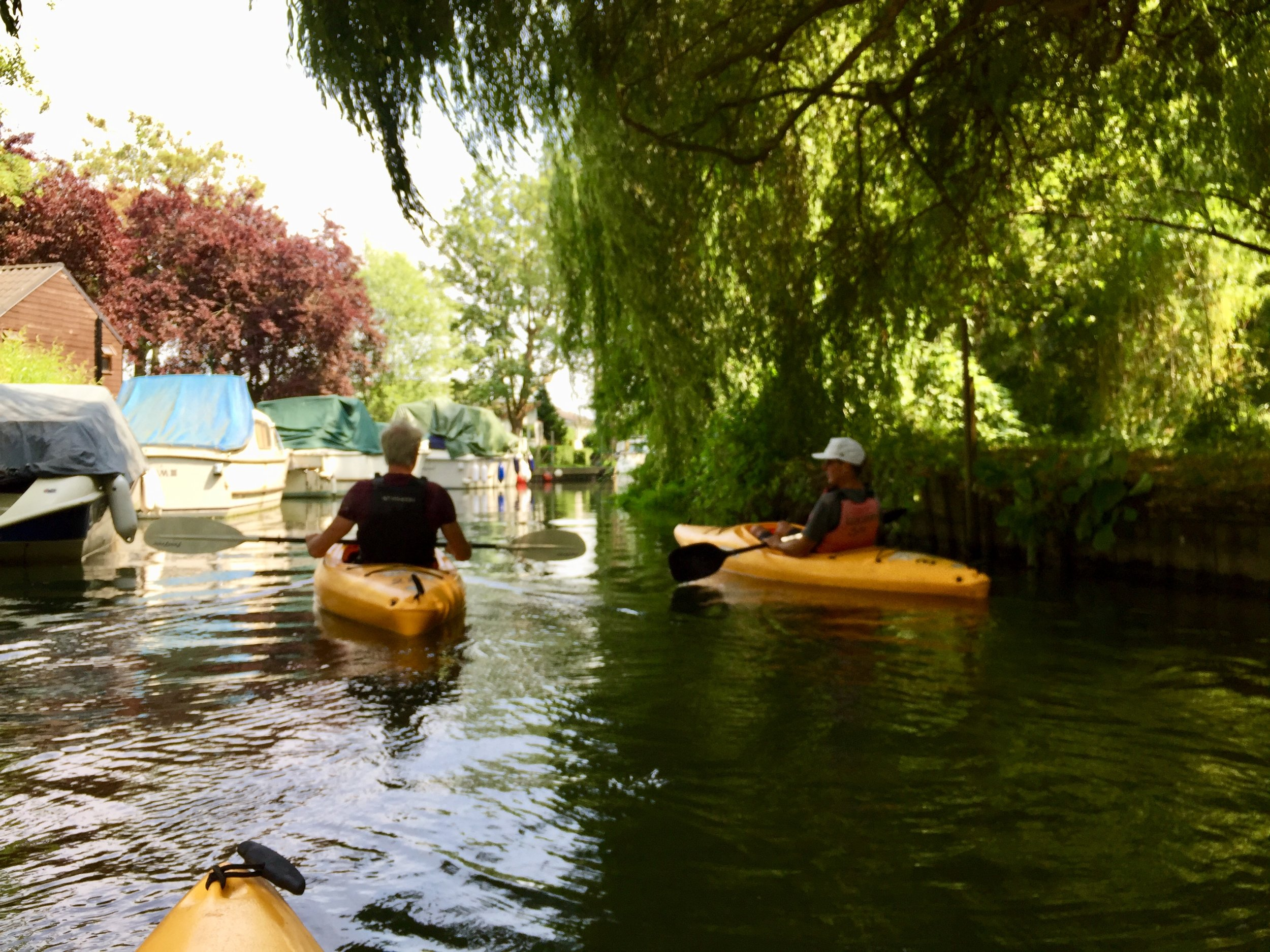 Rowing along willow-lined riverbanks? Yup.