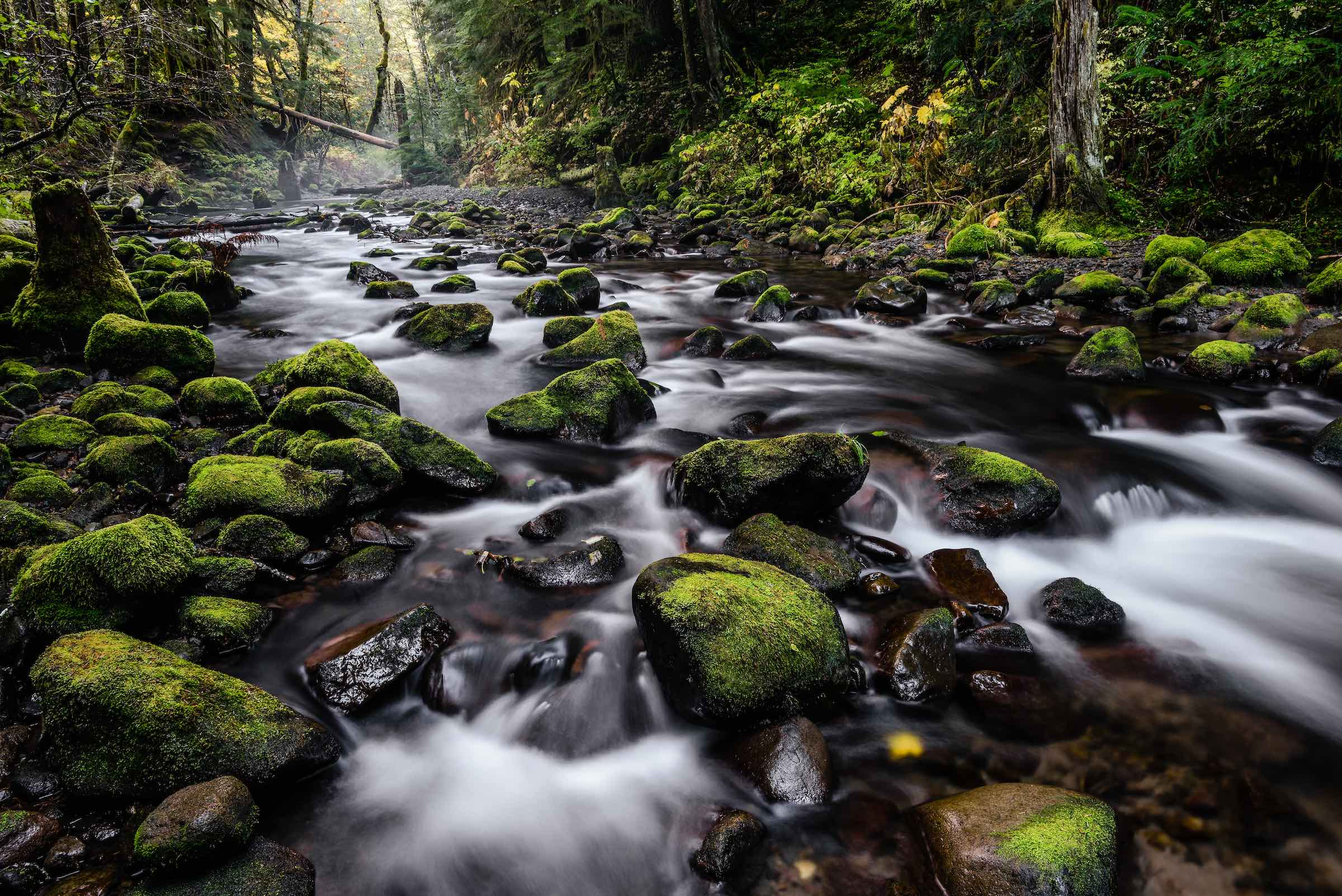 Lost Creek, Oregon. ©  given photography  2018