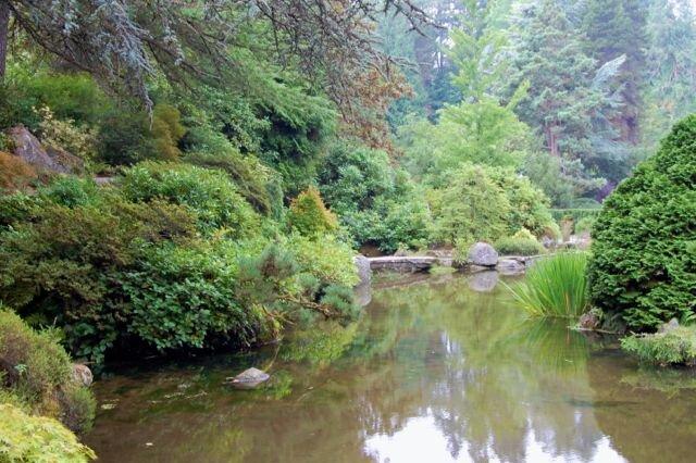 Kubota Garden pond