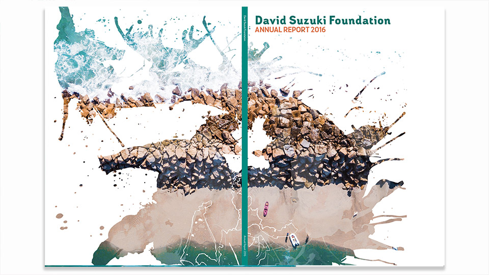 Both the front and back cover of the 2016 David Suzuki Annual Report. Click to enlarge.