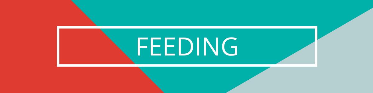 Copy of FEEDING (1).png