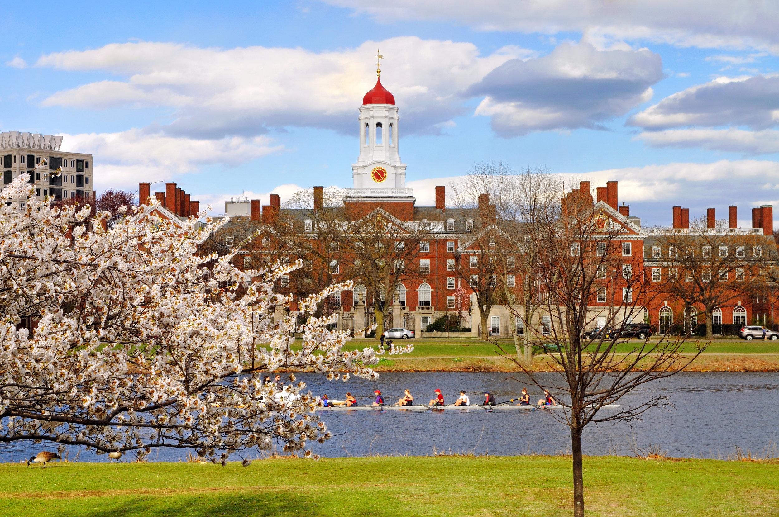 Harvard Yard  Cambridge, MA